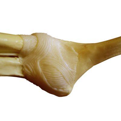 Cotovelo Básico - detalhe